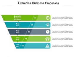 Examples Business Processes Ppt Powerpoint Presentation Ideas Maker Cpb