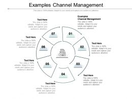Examples Channel Management Ppt Powerpoint Summary Templates Cpb