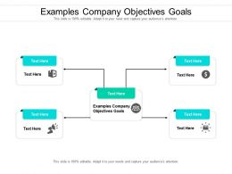 Examples Company Objectives Goals Ppt Powerpoint Presentation File Outline Cpb