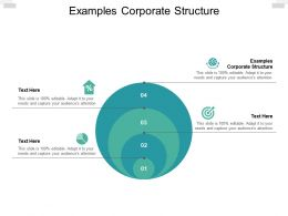 Examples Corporate Structure Ppt Powerpoint Presentation Ideas Format Cpb