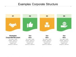 Examples Corporate Structure Ppt Powerpoint Presentation Inspiration Designs Cpb