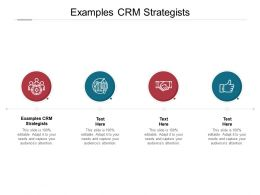 Examples CRM Strategists Ppt Powerpoint Presentation Slides Example Cpb