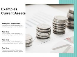 Examples Current Assets Ppt Powerpoint Presentation Gallery Visuals Cpb