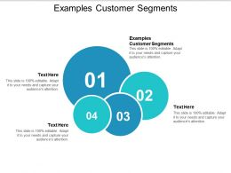 Examples Customer Segments Ppt Powerpoint Presentation Ideas Slides Cpb