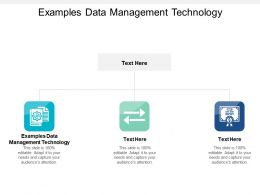 Examples Data Management Technology Ppt Powerpoint Presentation Slides Designs Cpb