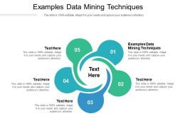 Examples Data Mining Techniques Ppt Powerpoint Presentation Icon Sample Cpb