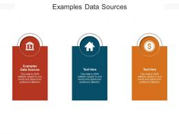 Examples Data Sources Ppt Powerpoint Presentation File Inspiration Cpb