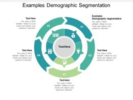 Examples Demographic Segmentation Ppt Powerpoint Presentation Icon Cpb