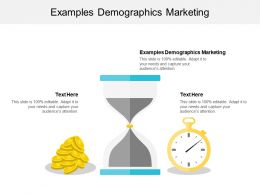 Examples Demographics Marketing Ppt Powerpoint Presentation Outline Grid Cpb