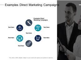 Examples Direct Marketing Campaigns Ppt Powerpoint Presentation Design Templates Cpb