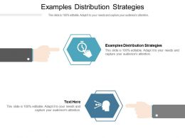 Examples Distribution Strategies Ppt Powerpoint Presentation Pictures Infographics Cpb