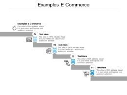 Examples E Commerce Ppt Powerpoint Presentation Layouts Guide Cpb