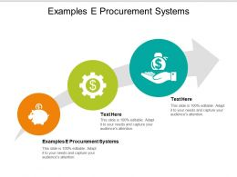 Examples E Procurement Systems Ppt Powerpoint Presentation Show Ideas Cpb