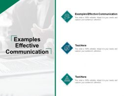 Examples Effective Communication Ppt Powerpoint Presentation Outfit Cpb