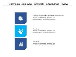 Examples Employee Feedback Performance Review Ppt Powerpoint Presentation Infographics Aids Cpb