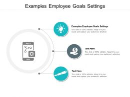 Examples Employee Goals Settings Ppt Powerpoint Presentation Styles Graphics Cpb