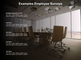 Examples Employee Surveys Ppt Powerpoint Presentation Infographics Gallery Cpb