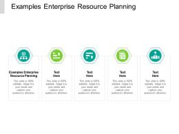 Examples Enterprise Resource Planning Ppt Powerpoint Presentation Sample Cpb