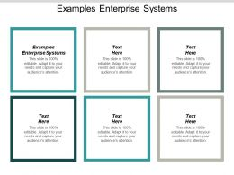 Examples Enterprise Systems Ppt Powerpoint Presentation Professional Infographics Cpb