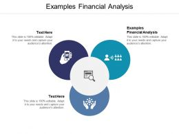 Examples Financial Analysis Ppt Powerpoint Presentation Layout Cpb