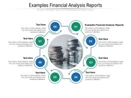 Examples Financial Analysis Reports Ppt Powerpoint Presentation Model Slideshow Cpb