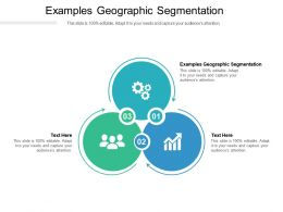 Examples Geographic Segmentation Ppt Powerpoint Presentation Infographic Template Templates Cpb