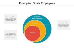 Examples Goals Employees Ppt Powerpoint Presentation Professional Designs Download Cpb