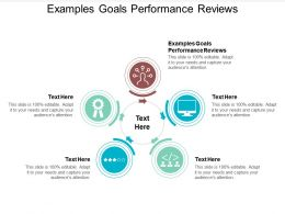 Examples Goals Performance Reviews Ppt Powerpoint Presentation Visual Aids Gallery Cpb