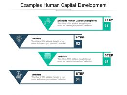 Examples Human Capital Development Ppt Powerpoint Presentation Clipart Cpb