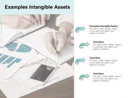 Examples Intangible Assets Ppt Powerpoint Presentation Gallery Icon Cpb
