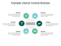 Examples Internal Controls Business Ppt Powerpoint Presentation Pictures Mockup Cpb