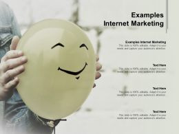 Examples Internet Marketing Ppt Powerpoint Presentation Slides Summary Cpb
