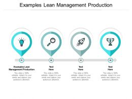 Examples Lean Management Production Ppt Powerpoint Presentation Styles Samples Cpb