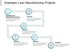 Examples Lean Manufacturing Projects Ppt Powerpoint Presentation Summary Microsoft Cpb