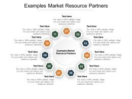 Examples Market Resource Partners Ppt Powerpoint Presentation Portfolio Cpb