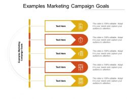 Examples Marketing Campaign Goals Ppt Powerpoint Presentation Outline Cpb