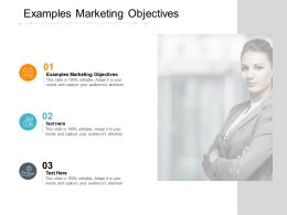Examples Marketing Objectives Ppt Powerpoint Presentation Summary Shapes Cpb