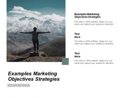Examples Marketing Objectives Strategies Ppt Powerpoint Presentation Pictures Vector Cpb