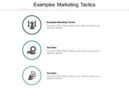 Examples Marketing Tactics Ppt Powerpoint Presentation Portfolio Clipart Cpb
