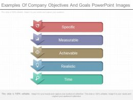 Examples Of Company Objectives And Goals Powerpoint Images