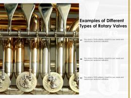 Examples Of Different Types Of Rotary Valves