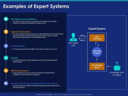 Examples Of Expert Systems Ppt Powerpoint Presentation Professional Example
