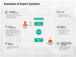 Examples Of Expert Systems Right Time Ppt Powerpoint Presentation Visual Aids Professional