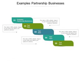 Examples Partnership Businesses Ppt Powerpoint Presentation Model Grid Cpb