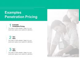 Examples Penetration Pricing Ppt Powerpoint Presentation Portfolio Cpb