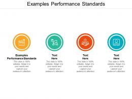 Examples Performance Standards Ppt Powerpoint Presentation Outline Example Cpb