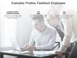 Examples Positive Feedback Employees Ppt Powerpoint Presentation Show Cpb