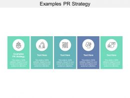 Examples PR Strategy Ppt Powerpoint Presentation Model Portrait Cpb