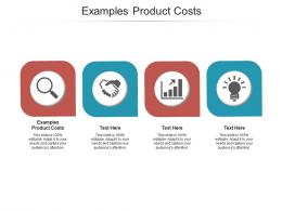 Examples Product Costs Ppt Powerpoint Presentation Example File Cpb