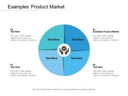 Examples Product Market Ppt Powerpoint Presentation Summary Graphic Tips Cpb